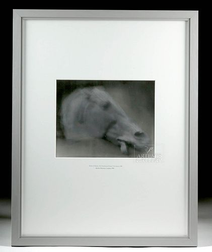 "1991 Peter Brandes ""Horse of Selene"" Photograph"