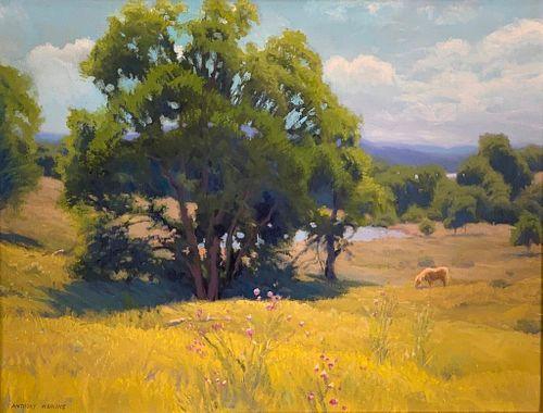 Anthony Watkins Oil, Summer Pasture