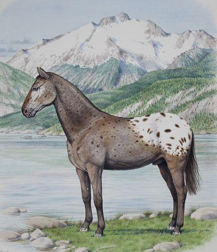 """Peter Barrett (B. 1935) """"Appaloosa Horse"""""""