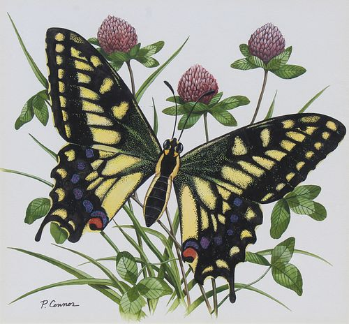 """Paul Connor (20th C) """"Swallowtail Butterfly"""""""