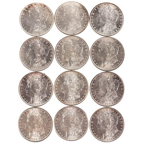 A Dozen Mint State Morgan Silver Dollars