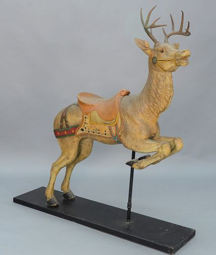 Deer Carousel figure having original paint authentic antlers and glass eyes, attributed to Gustave Dentzel. height 68 inches, length...