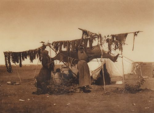 """Edward Curtis """"Drying Meat"""" Photograph"""