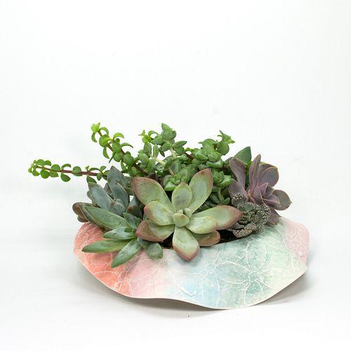Emilee Lace Planter