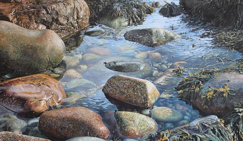 SUZANNE VINCENT, Certificate 84-85  - Tide Pool