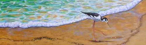 BONNIE SOL, BFA 98 - A Walk Along the Shore