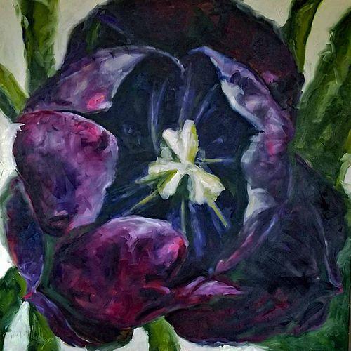 LULLY SCHWARTZ, Diploma 83 - Black Tulip