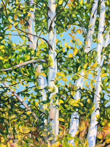 LAURIAN LEAVITT, Certificate 76 - Sunny Day Birches
