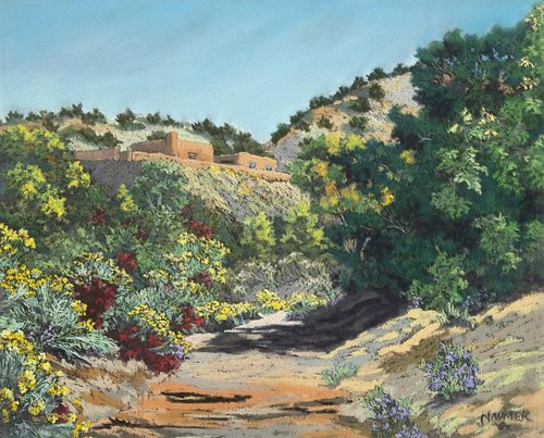 Helmuth Naumer, Untitled (Arroyo with Chamisa)
