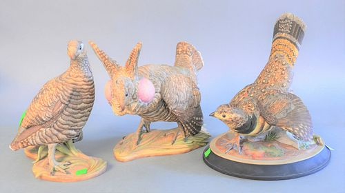 "Three Boehm porcelain birds, two titled, Lesser Prairie Chickens, two stamped to the underside, one signed on the base, hts.11-1/2"" to 10-1/2""."