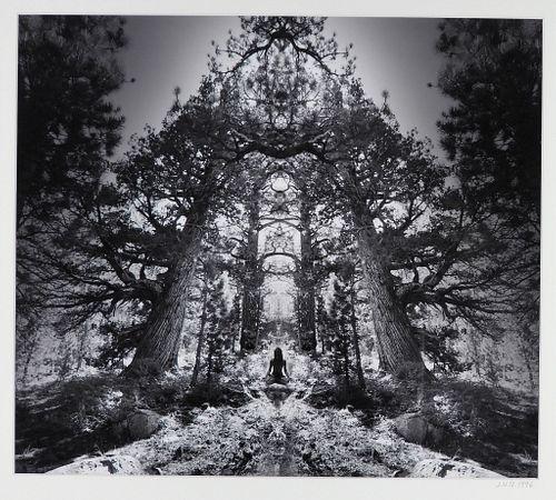 Jerry Uelsmann Surreal Redwood Pagoda Photograph