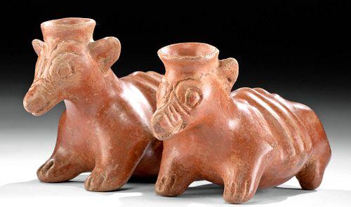 Rare Colima Redware Vessel - Conjoined Dogs