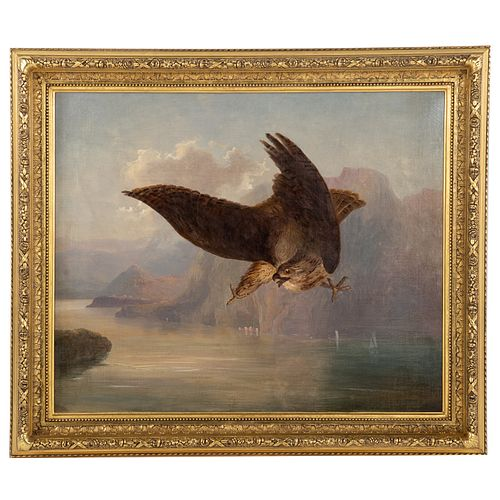Attrib. to Robert Havell, Jr. Bird of Prey, oil