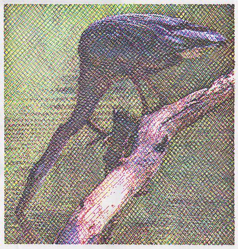 MICHAEL ZACHARY M'08, Heron