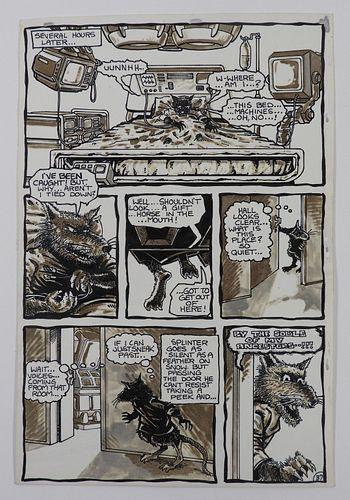 Kevin Eastman Peter Laird Mirage TMNT Original Art
