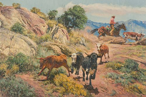 Bill Owen  Rough Country Steer Outfit