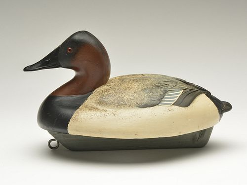 Classic style wide or pancake body canvasback drake, Ferdinand Bach, Detroit, Michigan, 2nd quarter 20th century.