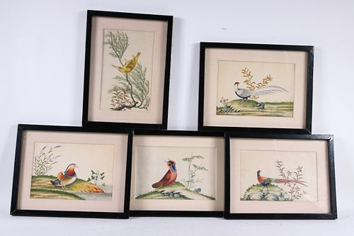Five Chinese School Watercolors of Birds