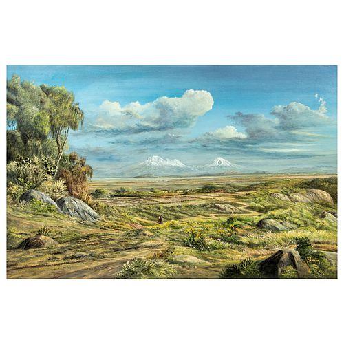 CARLOS PELESTOR. Valle de México. Firmado. Óleo sobre tela. 60 x 90 cm