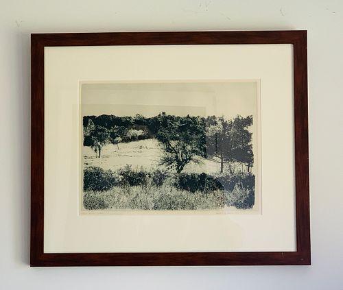 Herbert Fink, Annies Garden, Etching on Paper,1979