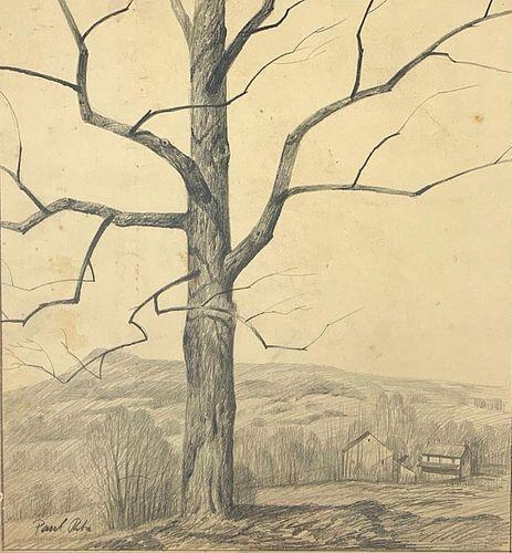 Paul Riba Drawing, Tree on a Hill