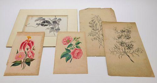 5PC Japanese & European Botanical Studies
