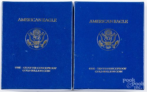 Two American eagle gold coins