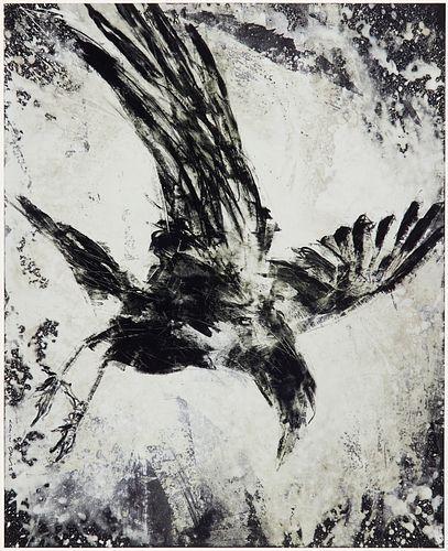 "Colin Davis ""Celtic Crow"" Monoprint on Aluminum"