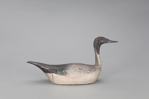 Kankakee Pintail Drake Decoy, Herman R. Trinosky (1874-1956) Rig