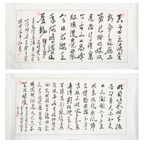 Lote de 2 kakemonos. China siglo XX. Con poemas de Mao Tse Tung. Tinta sobre papel satinado con motivos orgánicos.