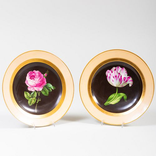Pair of Vienna Porcelain Botanical Cabinet Plates