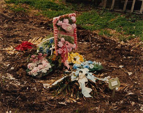 "Birney Imes Photograph Memorial ""Jesus Called"""