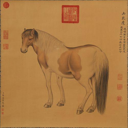 HORSE, LANG SHINING