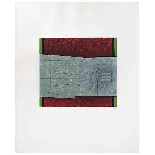 GUNTHER GERZSO, Sin título, del portafolio Del Árbol Florido, Firmada y fechada 80, Serigrafía 7/100, 31 x 34 cm | GUNTHER GERZSO, Untitled, from port