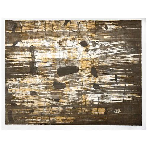 "IRMA PALACIOS, Reflejos, Firmada, Litografía 19 / 20, 87 x 115 cm | IRMA PALACIOS, Reflejos, Signed, Lithograph 19 / 20, 34.2 x 45.2"" (87 x 115 cm)"