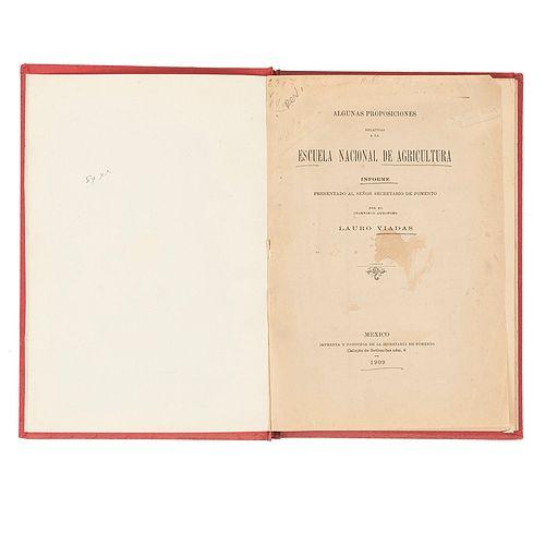 Viadas, Lauro. Algunas Proposiciones Relativas a la Escuela Nacional de Agricultura. México,1909. Un plano plegado.