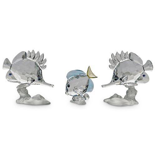 (3 Pc) Swarovski Crystal Fish Figurine Grouping