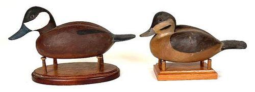 Pair of Ruddy Ducks by Alberto Williams