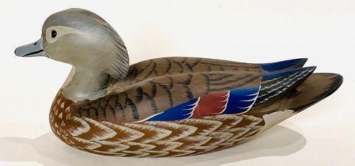 Wood Duck Hen by Paul Arness