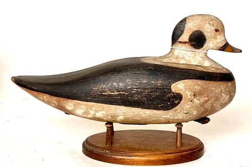 Old Squaw Decoy from Maine