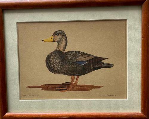 W/C Canada Goose and Black Duck Wm Tyner