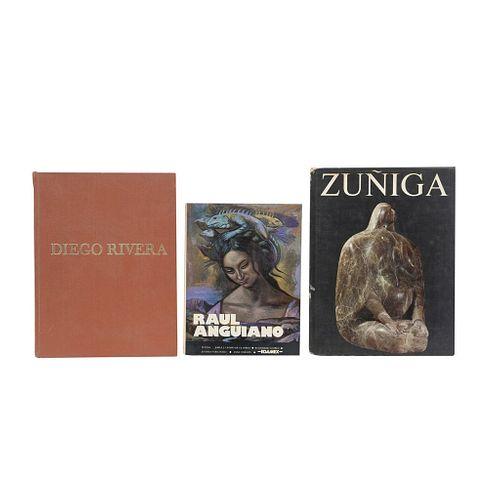 Libros sobre Zuñiga, Raúl Anguiano y Diego Rivera. Piezas: 3.