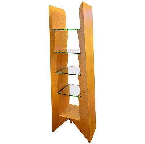 Modern Birdseye Maple and Glass Bookcase
