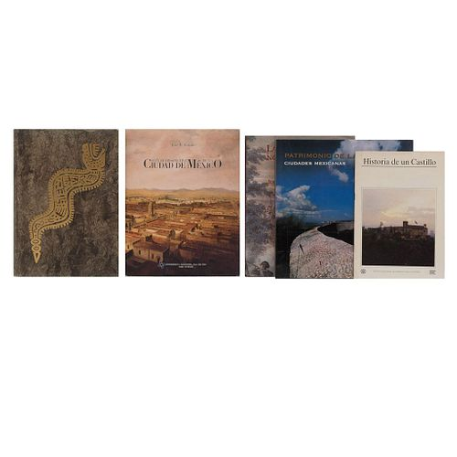 La Intervención Norteamericana / Guía Retrospectiva de la Ciudad de México / Mexico a History in Art.  Piezas: 5.