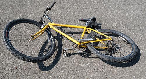 Specialized Stump Jumper Adventure Bike