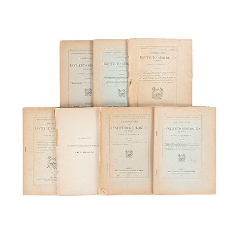 Secretaría de Fomento, Colonización e Industria. Parérgones del Instituto Geológico de México. México: 1907, 1913 y 1914. Piezas: 7.