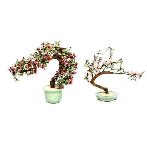 Chinese Ming Trees