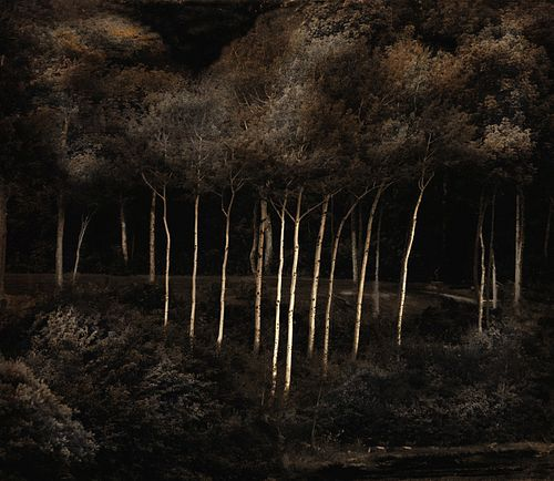 Russell Dupont, Diploma - Birches, Maine -- #3/25