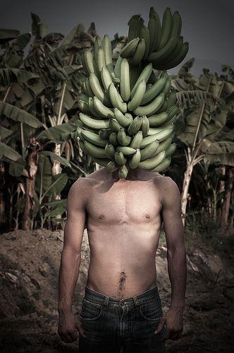 Gonzalo Fuenmayor, MFA '04 - Mr Bananaman Edition 2/5