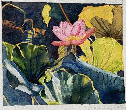 Elizabeth A. Zeldin, Certificate - Full Bloom
